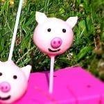 Schweinchen Cake-Pops Rezept