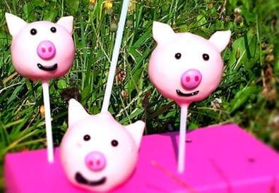 Schweinchen Cake-Pops Titel
