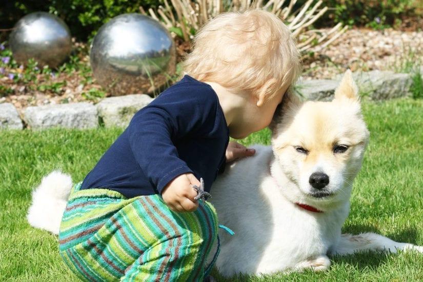 allergien bei babys und kleinkinder-titel