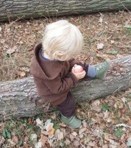 Herbst mit Kindern Äpfel pflücken