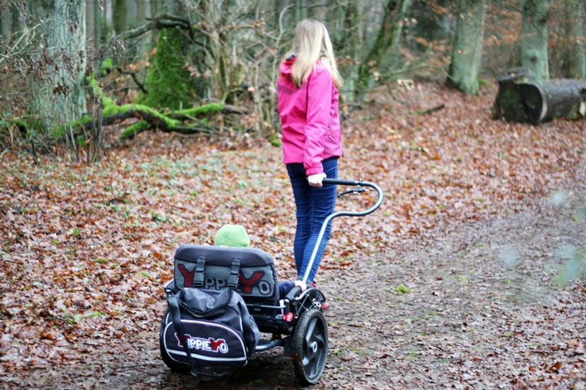 yippieyo crossbuggy wald